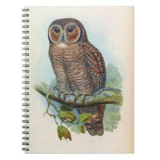 Syrnium Ocellatum (Mottled wood owl) Spiral Notebook