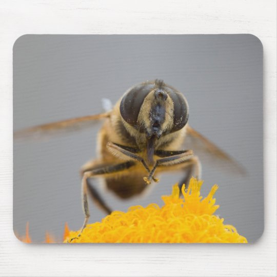 Syrphidae Mouse Pad