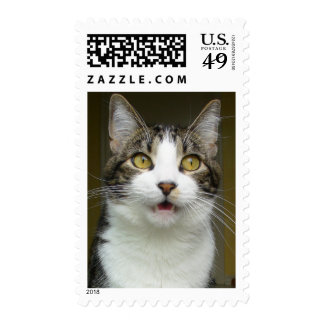 Syrus Shocked Stamps 0001