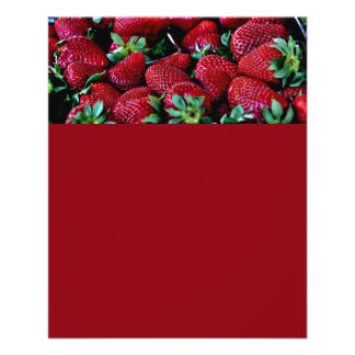 """SYS STRAWBERRIES PHOTOGRAPHY BACKGROUNDS WALLPAPER 4.5"""" X 5.6"""" FLYER"""