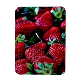 SYS STRAWBERRIES PHOTOGRAPHY BACKGROUNDS WALLPAPER MAGNET