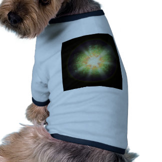 System 7 dog clothes