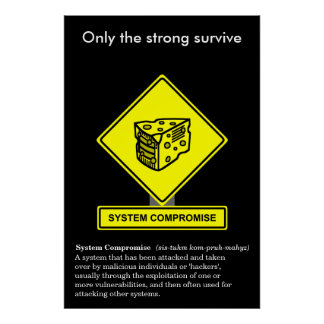 System Compromise Security Awareness Poster