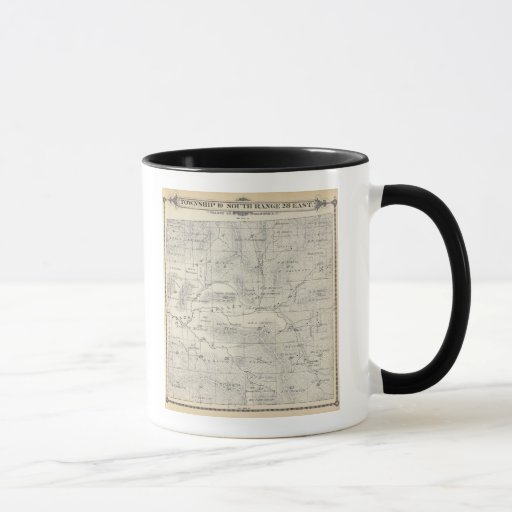 T19S R28E Tulare County Section Map Mug