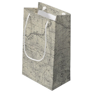 T2021S R3031E Tulare County Section Map Small Gift Bag