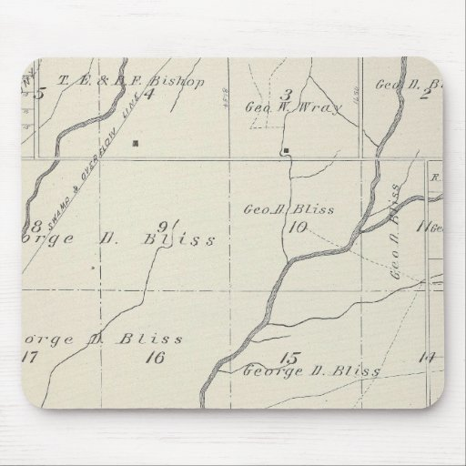 T20S R25E Tulare County Section Map Mouse Pad