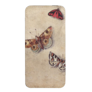T31566 A Study of Various Insects, Fruit and Anima iPhone 5 Pouch
