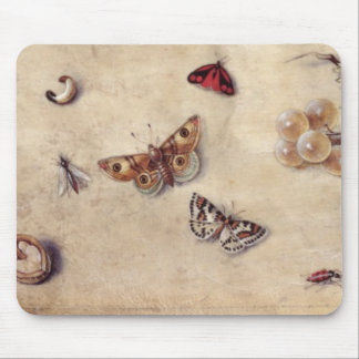 T31566 A Study of Various Insects, Fruit and Anima Mouse Pad
