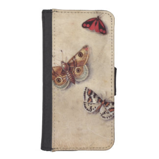 T31566 A Study of Various Insects, Fruit and Anima iPhone 5 Wallet Case