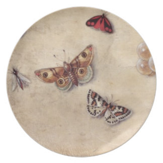 T31566 A Study of Various Insects, Fruit and Anima Plate