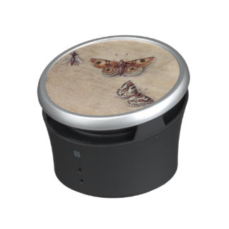 T31566 A Study of Various Insects, Fruit and Anima Speaker