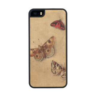 T31566 A Study of Various Insects, Fruit and Anima Carved® Maple iPhone 5 Slim Case
