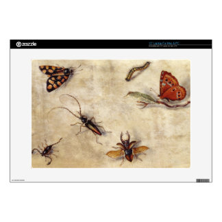 """T31567 A Study of Various Insects, Fruit and Anima 15"""" Laptop Decals"""