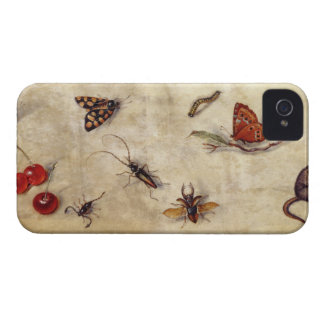 T31567 A Study of Various Insects, Fruit and Anima iPhone 4 Case-Mate Cases