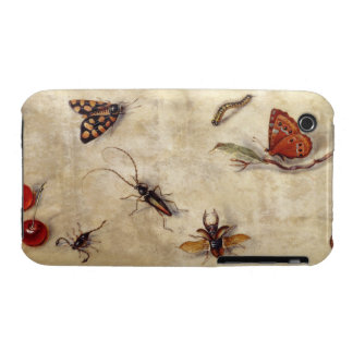 T31567 A Study of Various Insects, Fruit and Anima iPhone 3 Covers