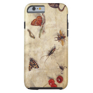 T31567 A Study of Various Insects, Fruit and Anima Tough iPhone 6 Case