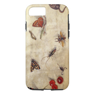 T31567 A Study of Various Insects, Fruit and Anima iPhone 8/7 Case