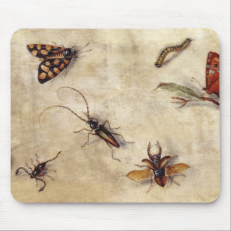 T31567 A Study of Various Insects, Fruit and Anima Mouse Pad