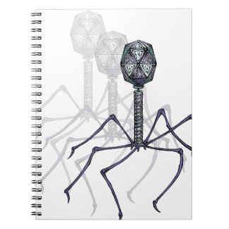 T4 Bacteriophage Notebook