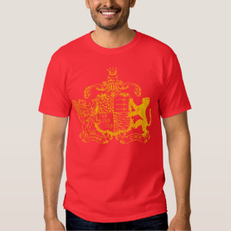 T-cats coat of arms - yellow - with cities t shirt