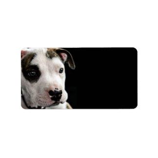 T-Hueso del pitbull del perrito Etiquetas De Dirección
