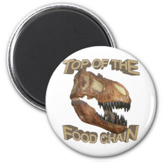 T-rex / Food Chain Magnets