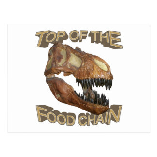 T-rex / Food Chain Post Cards
