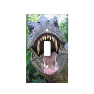 T-Rex Light Switch Cover.  Because, why not :)