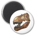 T-rex Skull Fridge Magnet