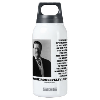T. Roosevelt Object Government Welfare Of People SIGG Thermo 0.3L Insulated Bottle
