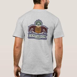 T-Shirt 3 color