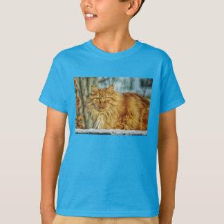 T-shirt Gatos CCO