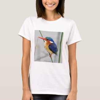 T shirt of kingfisher