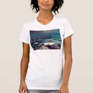 T-Shirt - Powder Blue Surgeon Fish