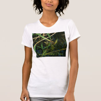 T-shirt (woman) with mimetic green frog