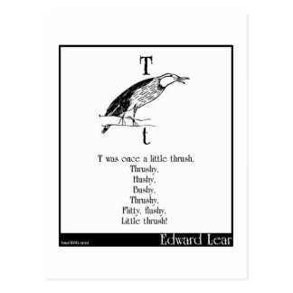 T was once a little thrush postcard