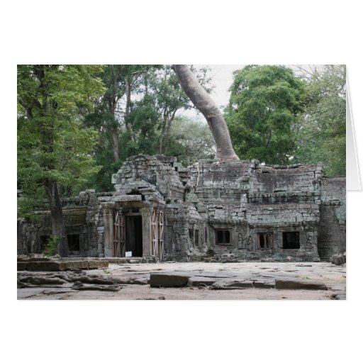 ta prohm front cards