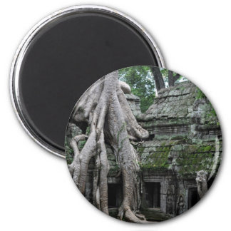 ta prohm in cambodia magnet