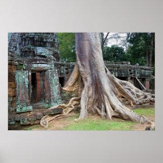 Ta Prohm Temple in Cambodia Posters