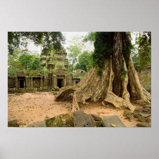 Ta Prohm Temple Ruins in Cambodia Print