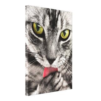 tabby-114782 tabby cat close up portrait feline an canvas prints