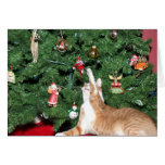 Tabby and Christmas tree Greeting Card