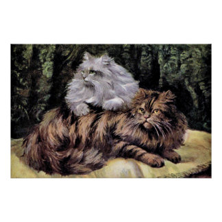 Tabby and Silver Persians Poster