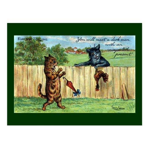 Tabby asustado por el gato oscuro con el regalo de postal