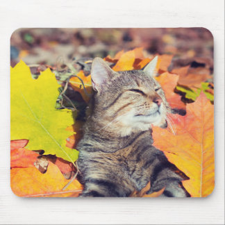 Tabby Basking in the Foliage Mouse Pad