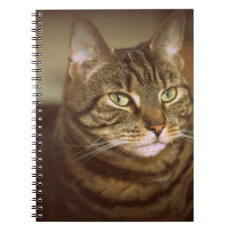 Tabby Cat 1960s Vintage Style Notebook