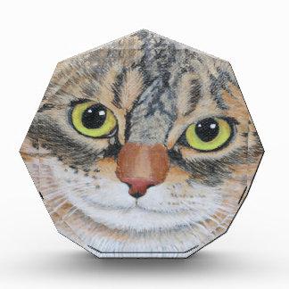 Tabby Cat Acrylic Award