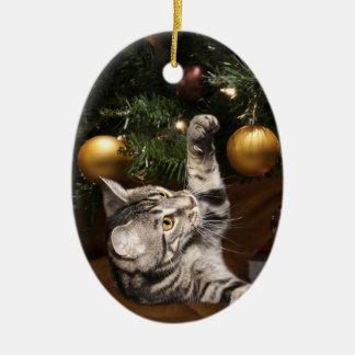 Tabby cat and Christmas tree Ceramic Ornament