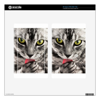 Tabby Cat Black, Gray and White Closeup Kindle Fire Skins