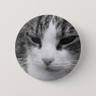 Tabby Cat Black & White Photograph Pinback Button